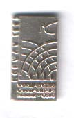 Logo pin in silver